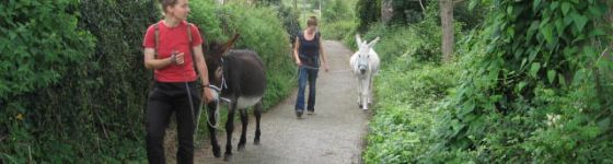 A donkey walk with our former donkeys Añes and Lola near Santianes
